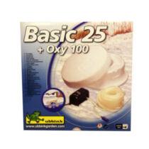 Ubbink Basic 25 + Oxy 100 befagyásgátló