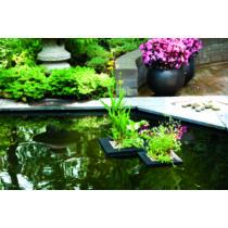 Velda Lebegő vizinövény ültető, 35 cm, négyzet