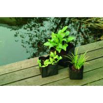 Vízinövény tasak szögletes 18x18x18cm