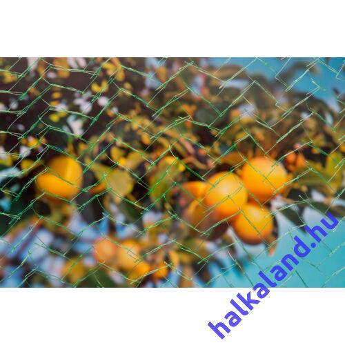Növény és gyümölcs védő háló 10mx 2 m
